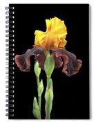 Iris 3 Spiral Notebook