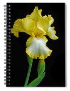 Iris 4 Spiral Notebook