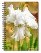 Iris 42 Spiral Notebook