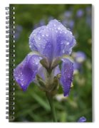 Iris After Rain Spiral Notebook
