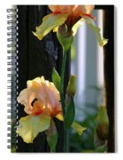 Iris Along The Fence 6731 H_2 Spiral Notebook