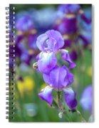 Ballet Girl. The Beauty Of Irises Spiral Notebook