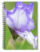 Iris Bud Autumn Circus Spiral Notebook