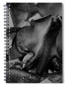 Iris Bw 3210 Spiral Notebook