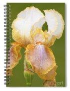 Iris Canary Frills Spiral Notebook