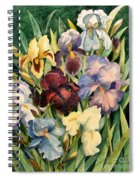 Iris Collection Spiral Notebook
