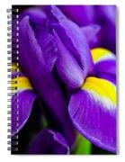 Iris Detail 2 Spiral Notebook