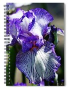 Iris Dressed For Royalty Spiral Notebook