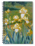 Iris Etude Spiral Notebook