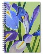 Iris Fields - Center Panel Spiral Notebook