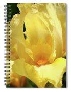 Iris Flower Floral Art Prints Orange Irises Spiral Notebook