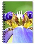 Iris Flower Spiral Notebook
