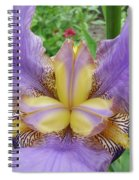 Iris Flower Lavender Purple Yellow Irises Garden 19 Art Prints Baslee Troutman Spiral Notebook