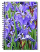 Iris Flowers Artwork Purple Irises 9 Botanical Garden Floral Art Baslee Troutman Spiral Notebook
