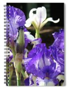 Iris Flowers Floral Art Prints Purple Irises Baslee Troutman Spiral Notebook