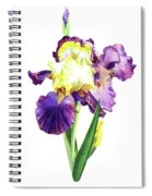 Iris Flowers Watercolor  Spiral Notebook