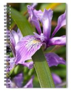 Iris Haiku Spiral Notebook