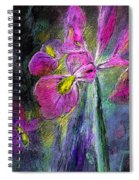 Iris In The Night Spiral Notebook