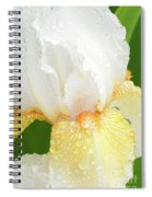Iris In The Rain II Spiral Notebook