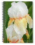 Iris In The Rain Spiral Notebook