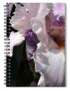 Iris Lace Spiral Notebook