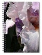 Iris Lace Spiral Notebook