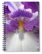Iris Lashes Spiral Notebook