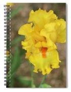Iris Lol Spiral Notebook