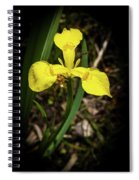 Iris Of The Marshes - 1 Spiral Notebook