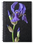 Iris On Black Leather Spiral Notebook