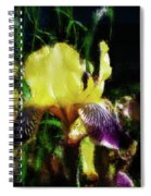 Iris Purple And Yellow Spiral Notebook