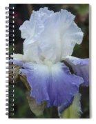 Iris Singing The Blue Spiral Notebook