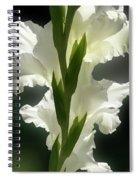 Gladiolus Spectacular #2 Spiral Notebook