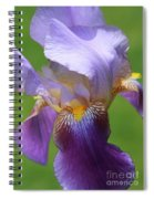 Iris Spirit Spiral Notebook