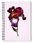 Iris Splash O' Wine Spiral Notebook