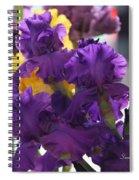 Iris Study Spiral Notebook