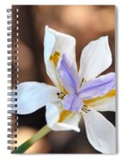 Iris Wide Open Spiral Notebook