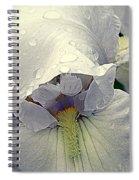 Iris With A Bonnet Series 7 Spiral Notebook