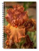 Iris_dsc4793_16 Spiral Notebook
