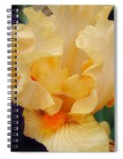 Irises Art Prints Peach Iris Flowers Artwork Floral Botanical Art Baslee Troutman Spiral Notebook