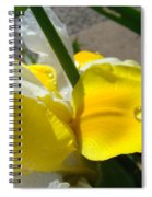 Irises Artwork Iris Flowers Art Prints Flower Rain Drops Floral Botanical Art Baslee Troutman Spiral Notebook