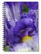 Irises Artwork Purple Iris Flowers Art Prints Canvas Baslee Troutman Spiral Notebook