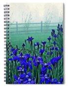 Irises At Dawn 3 Spiral Notebook