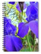 Irises Floral Garden Art Print Blue Purple Iris Flowers Baslee Troutman Spiral Notebook