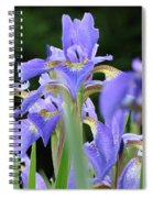 Irises Flowers Art Prints Blue Purple Iris Floral Baslee Troutman Spiral Notebook