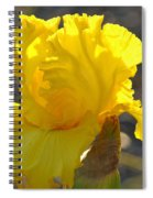 Irises Yellow Iris Flowers Art Prints Floral Canvas Baslee Troutman Spiral Notebook