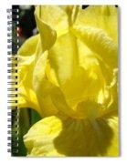 Irises Yellow Iris Flowers Floral Art Prints Botanical Garden Artwork Giclee Spiral Notebook