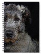 Irish Wolfhound Droc Vi Spiral Notebook