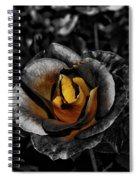 Iron Rose Spiral Notebook