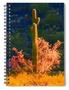 Ironwood Saguaro Dance - Bold Spiral Notebook